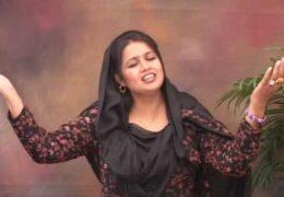 Saleeboon ka Shahir